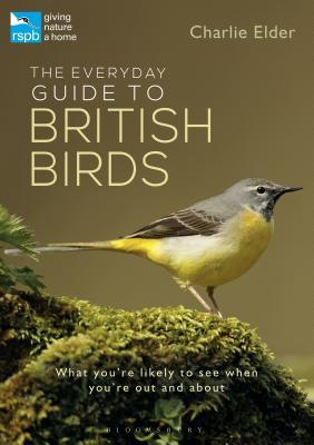 The Everyday Guide to British Birds: What You're Likely to See When You're Out and about