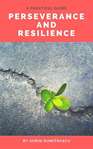 Perseverance and Resilience: A Practical Guide