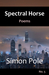 Spectral Horse Poems No. 5