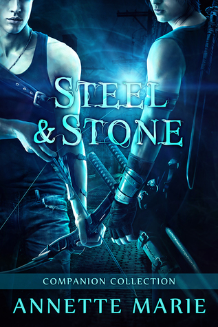 Steel and Stone Companion Novel