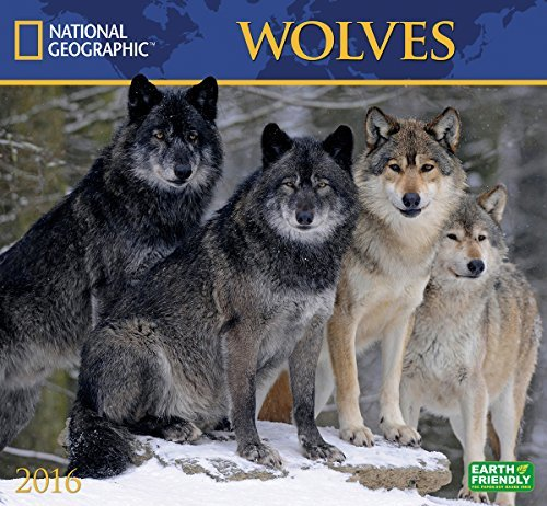 Wolves National Geographic 2016 Wall Calendar