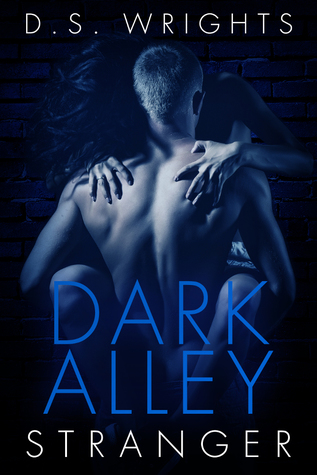 Dark Alley Stranger (Dark Alley, #1A) by D.S. Wrights