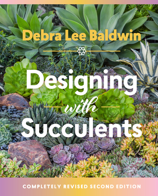 designing-with-succulents