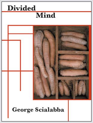Divided Mind