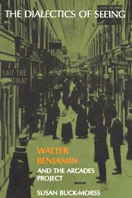 The Dialectics of Seeing: Walter Benjamin and the Arcades Project
