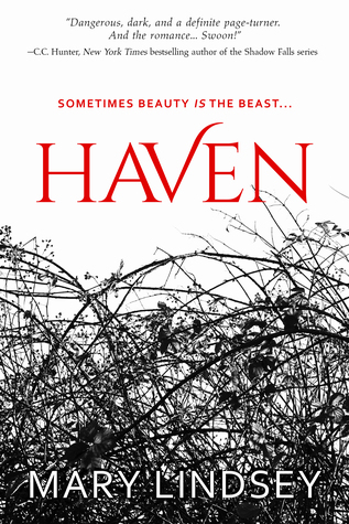 Single Sundays: Haven by Mary Lindsey