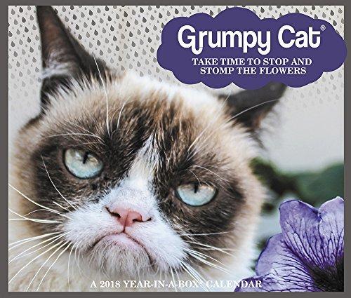 2018 Grumpy Cat Calendar