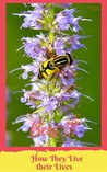 Bees!!! How they Live Their Lives: 88 pages large Images Photo books, photo books nature, photo books adults, photo books children, photo books kids (photo book nature 2)