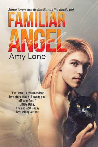 Release Day Review: Familiar Angel by Amy Lane