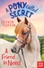 A Friend in Need (A Pony Called Secret, #2)