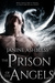 The Prison of the Angels by Janine Ashbless