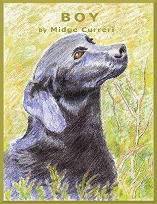 BOY (Children's Fiction Books)