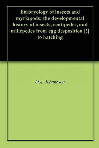 Embryology of insects and myriapods; the developmental history of insects, centipedes, and millepedes from egg desposition [!] to hatching