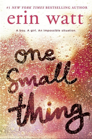 Image result for one small thing by erin watt