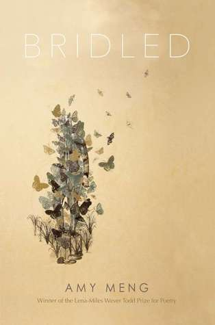 book cover of butterfly flock