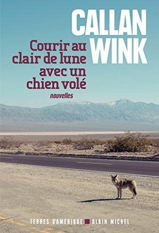 courir-au-clair-de-lune-avec-un-chien-vol-terres-d-amrique
