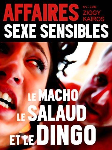 Affaires Sexe Sensibles n°2 : Le macho, le salaud et le dingo (Porno Pop Chaos)