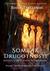 Somrak Drugotnosti (Vitezi in čarovniki, #1.4, #1.5)