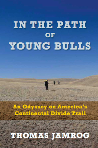 In the Path of Young Bulls by Thomas Jamrog