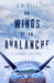 On Wings of an Avalanche