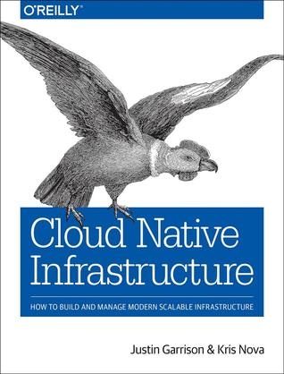 Cloud Native Infrastructure: How to Build and Manage Modern Scalable Infrastructure