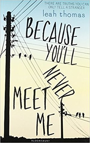 Because You'll Never Meet Me (Because You'll Never Meet Me #1)
