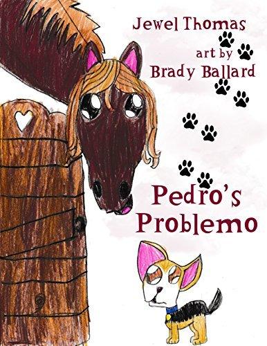 Pedro's Problemo