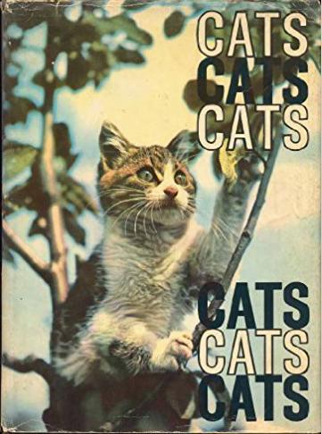 Cats Cats Cats Cats Cats Cats