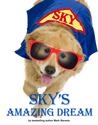 Sky's Amazing Dream by Mark       Stevens