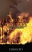 Flaming Crimes (Disaster Cr...