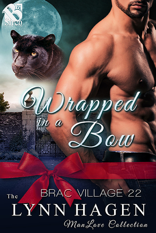 Wrapped in a Bow (Brac Village #22)