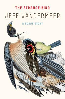 Image result for Strange Bird by Jeff Vandermeer