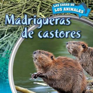 madrigueras-de-castores-inside-beaver-lodges