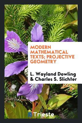 Modern Mathematical Texts; Projective Geometry