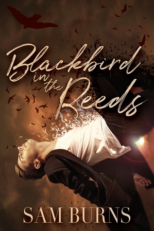 Release Day Review: Blackbird in the Reeds (The Rowan Harbor Cycle, #1) by Sam Burns