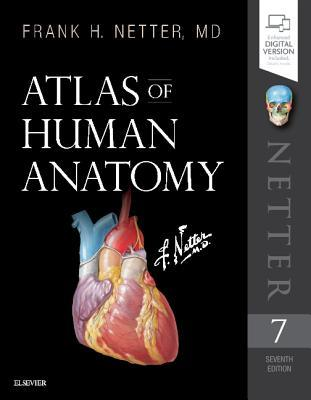 Download Book Atlas Of Human Anatomy By Frank H Netter Pdf Epub Audiobook Ebooks Now