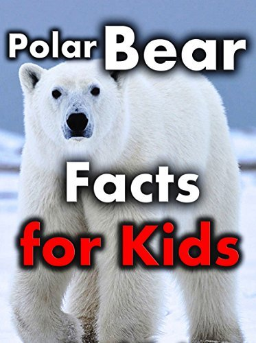 Polar Bear Facts for Kids: Interesting Facts About Polar Bears