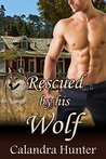 Rescued by his Wolf