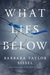 What Lies Below by Barbara Taylor Sissel