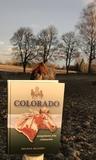 Colorado Galopphästen från vildmarken