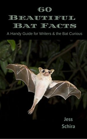60-beautiful-bat-facts-a-handy-guide-for-writers-the-bat-curious