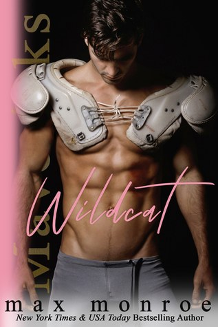 Wildcat (Mavericks, #1)