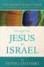 The Gospel of Matthew Through New Eyes Volume One: Jesus as Israel