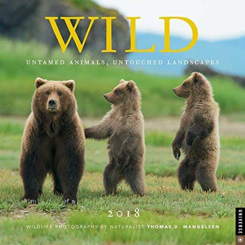 Wild 2018 Wall Calendar: Untamed Animals, Untouched Landscapes