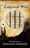 The Labyrinth Wall (Obsidian Book 1)