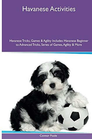 Havanese Activities Havanese Tricks, Games & Agility. Includes: Havanese Beginner to Advanced Tricks, Series of Games, Agility and More