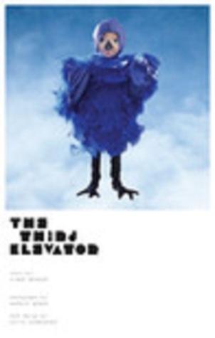 The Third Elevator