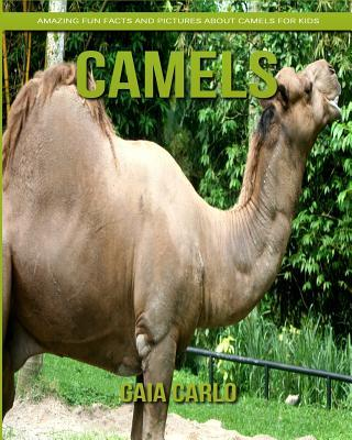 Camels: Amazing Fun Facts and Pictures about Camels for Kids