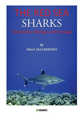 The Red Sea Sharks (Pensoft Series Faunistica)
