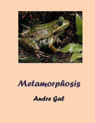 Metamorphosis - short story 9